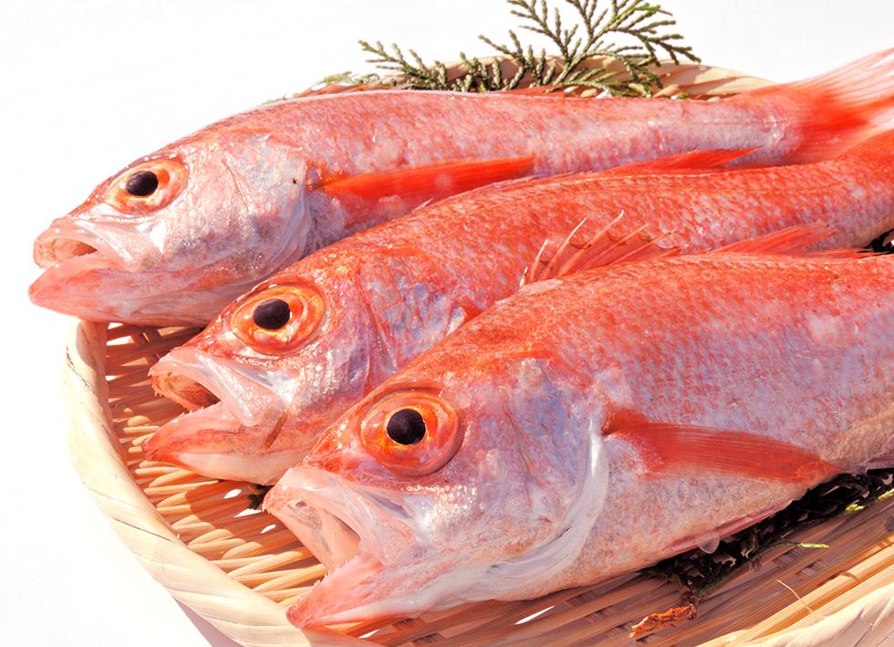 鮮魚で味わうのどぐろイメージ